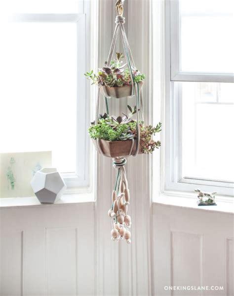 diy hanging succulent garden design sponge