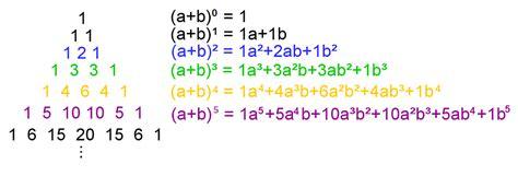 pascalsches dreieck mathe artikel serloorg