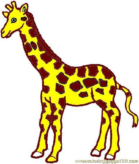 giraffe coloring pages clipart panda  clipart images