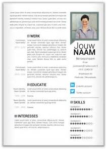 modern curriculum vitae formats 17 best images about cv tips on pinterest crafting cover letters and curriculum
