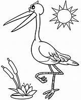 Coloring Stork Topcoloringpages Print sketch template