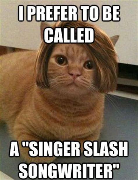 Meme Cats - cat memes