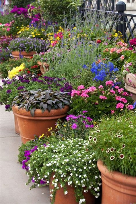 302 Best Images About Outdoor Planters And Pots On Pinterest