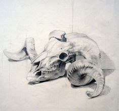 Sheep Skull Drawing Louisa Deviantart Heart