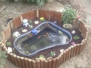 Plante Pour Bassin Extérieur : bassin exterieur 250 litre ~ Premium-room.com Idées de Décoration