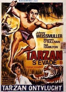 La Légende De Zorro Streaming Vf : regarder les aventures de tarzan new york 1942 en streaming vf zone films ~ Medecine-chirurgie-esthetiques.com Avis de Voitures