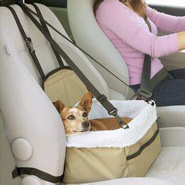 siege auto chien bientot les vacances de animalisland