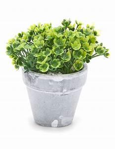 Pot De Fleur Artificielle : petit pot fleurs artificielles vertes d coration anniversaire et f tes th me sur vegaoo party ~ Teatrodelosmanantiales.com Idées de Décoration
