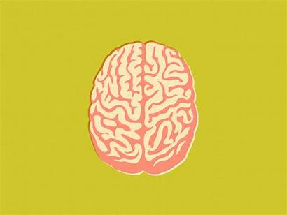 Brain Wired Elon Learning Improve Musk Alzheimer