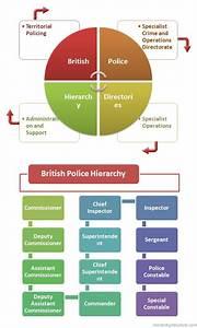 British Police Hierarchy System