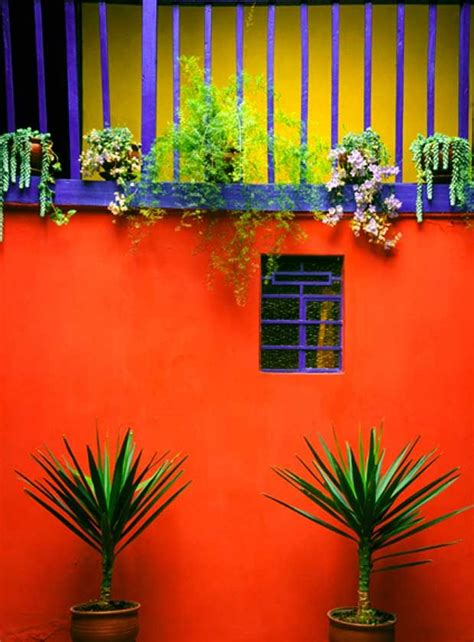 cheerful aesthetic beauty  color blocking  latin