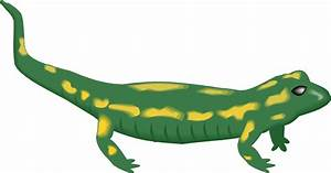 Cartoon Lizard | Page 2 - ClipArt Best - ClipArt Best