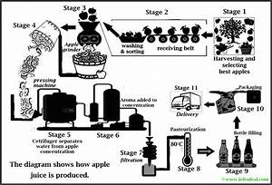 Ielts Academic Writing Task 1  Process Diagram On Apple Juice Production  With Candidate U0026 39 S