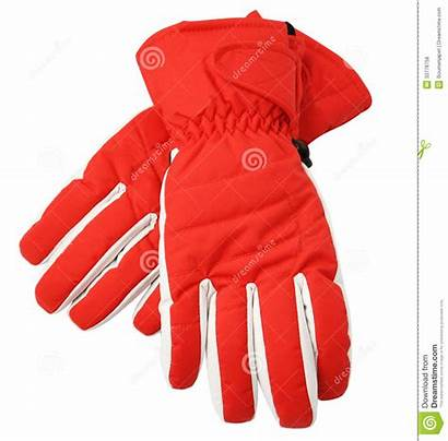 Gloves Ski Clipping Path Isolated