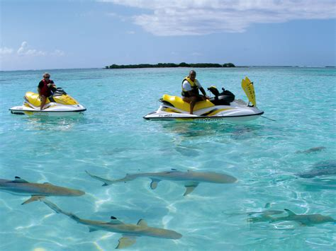 Jet Ski Plus Boat by Moorea Best Activities Jet Ski Safari 4 215 4 Pack Journ 233 E