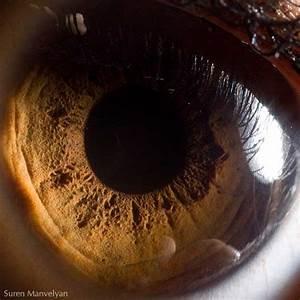 Asombrosas macrofotografías del ojo humano - Vista al Mar