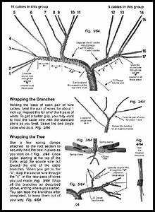 17 best ideas about wire trees on pinterest wire tree With wiring bonsai roots