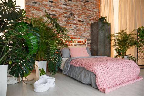 Pflanzen Im Schlafzimmer by Pflanzen Im Schlafzimmer Fluch Oder Segen