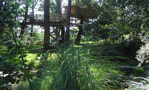 chambre cabane dans les arbres cabane dans les arbres bretagne cabane perchée morbihan