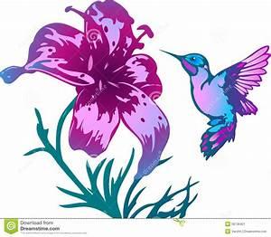 Hummingbirds And Flowers Clipart | www.pixshark.com ...
