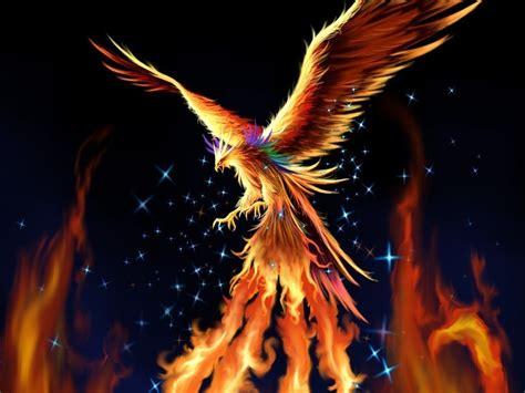 Blue Eyes White Dragon Background Phoenix Fantasy Wallpaper 17884366 Fanpop