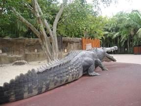 Biggest CROCODILE Ever