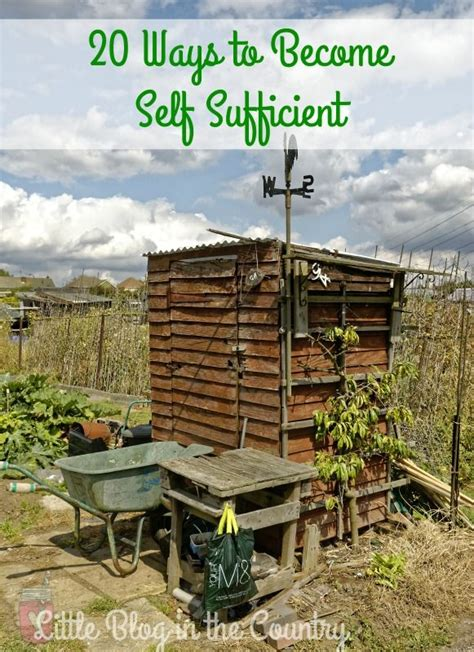 Self Sufficient Backyard - 33 best images about immigrants on week in