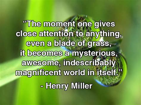 henry miller quotes quotesgram