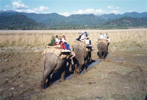 corbett park national safari jim elephant jeep jungle visit tour endangered species reasons five tiger