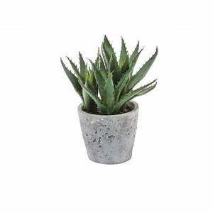 Pot De Fleur Artificielle : plante artificielle d 39 aloe v ra 22cm et pot effet ciment sia ~ Teatrodelosmanantiales.com Idées de Décoration