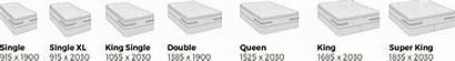 Bed Sizes Sealy Mattress Nz Mm Metric