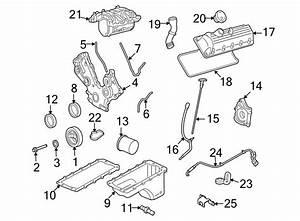 Ford Explorer Sport Trac Engine Intake Manifold Gasket