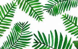 Palm leaves wallpaper from piximitmilch at design