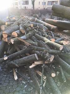 Stammholz Buche Preis : brennholz kaufen brennholz gebraucht ~ Orissabook.com Haus und Dekorationen