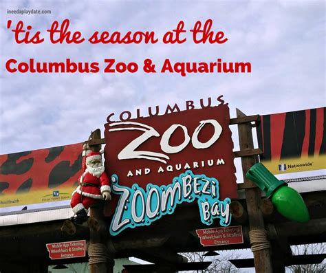 about the columbus zoo and aquarium wildlights