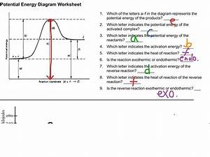Worksheet 37 Potential Energy Diagrams