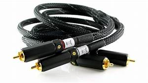 Lautus Interconnect Cable