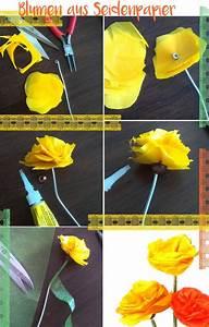 Blüten Aus Papier : die besten 25 seidenpapier blumen ideen auf pinterest papier pompons taschentuch poms und ~ Eleganceandgraceweddings.com Haus und Dekorationen
