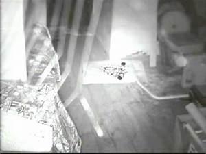 Marder Auf Dachboden : marderabwehr ein marder auf dem dachboden nachtaufnahme youtube ~ Frokenaadalensverden.com Haus und Dekorationen