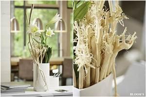 Deko Für Vasen : au ergew hnliche deko f r schlichte vasen tiziano design ~ Indierocktalk.com Haus und Dekorationen