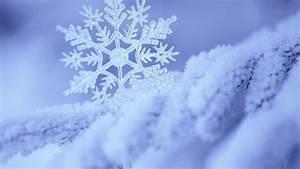 Macro Photography Snowflakes Wallpaper Free HD | I HD Images