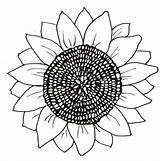 Sunflower Coloring Pages Printable Flower Flowers Sunflowers Head Patterns Para Cut Round Trace sketch template
