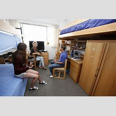 Movein Weekend  Preparation & Expectations  Ucla Parent