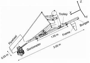 The Kayaking Ergometer With The Sliding Trolley