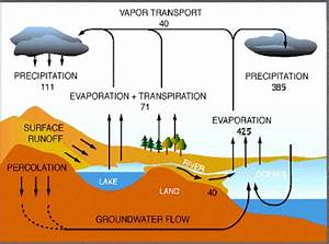 The Water Cycle Blank Diagram