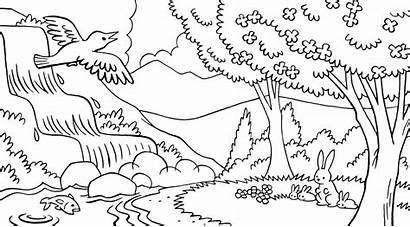 Gambar Mewarnai Coloring Nature Scene Stream Library