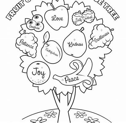 Fruit Coloring Pages Pineapple Popular