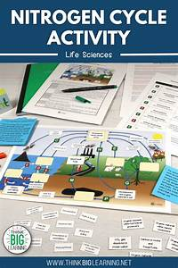 Nitrogen Cycle Interactive Diagram Activity With Task