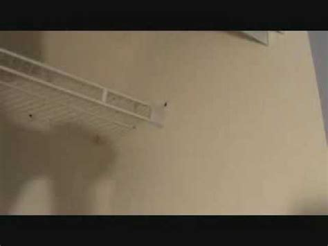 Installing Wire Shelving In Closets by Installing A Wire Closet Shelf