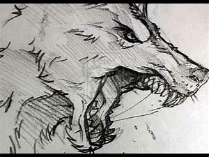 Wolf Snarling by wolfgirl7884 on DeviantArt